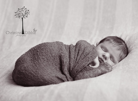 newborn baby posing