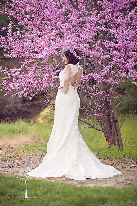 Sonora, CA wedding portrait