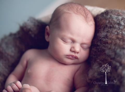 Sonora, Ca newborn photographer