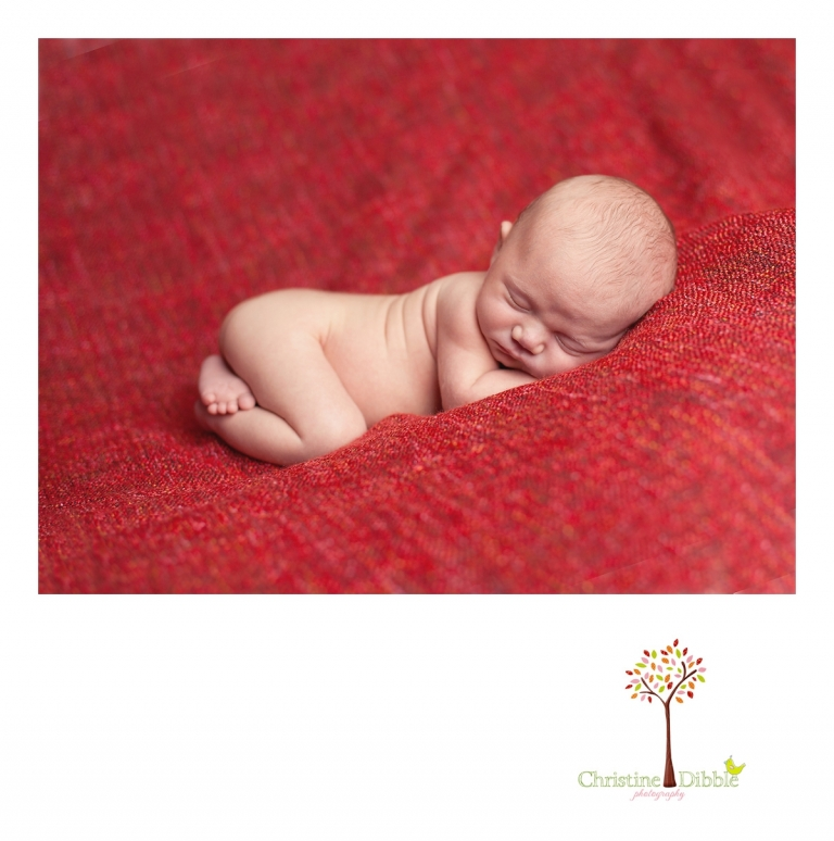 Sonora, CA Newborn Portraits_0287.jpg