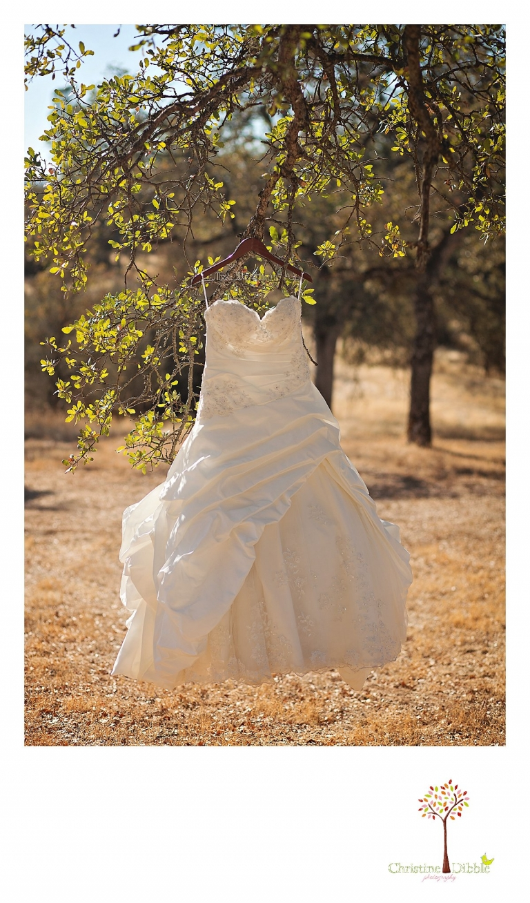 Sonora, CA Custom Portrait Photographer Christine Dibble Photography_0245.jpg