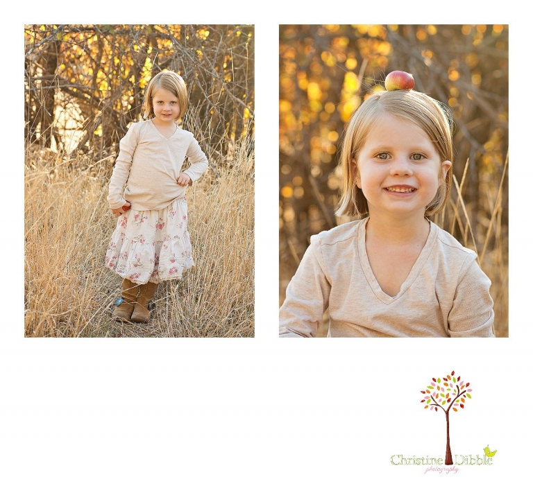 Sonora, CA Custom Portrait Photographer Christine Dibble Photography_0281.jpg