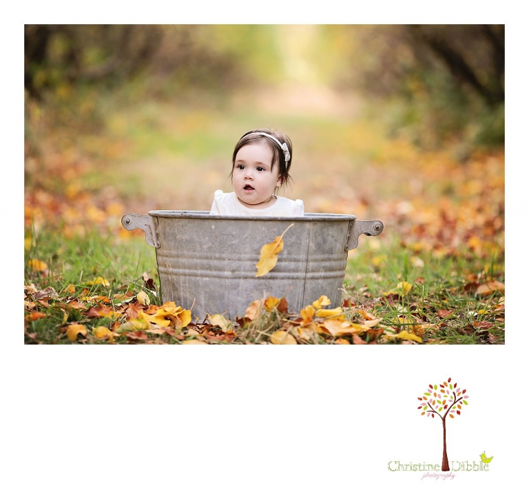 Sonora, CA Custom Portrait Photographer Christine Dibble Photography_0397.jpg