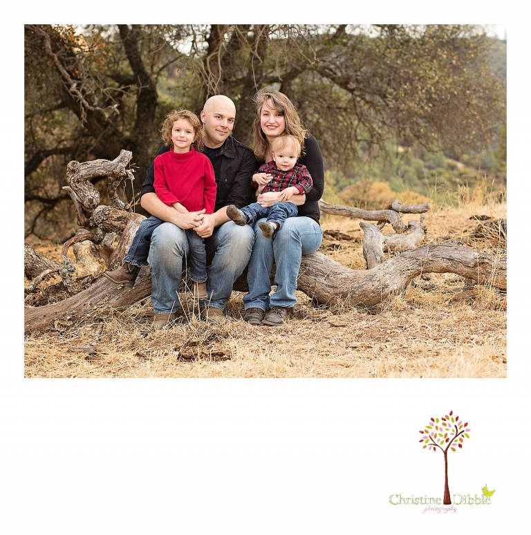Sonora, CA Custom Portrait Photographer Christine Dibble Photography_0581.jpg