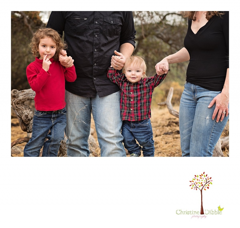 Sonora, CA Custom Portrait Photographer Christine Dibble Photography_0583.jpg