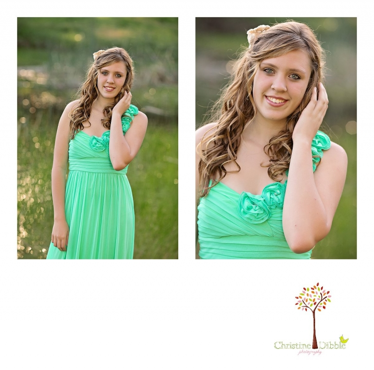 Sonora, CA Custom Portrait Photographer Christine Dibble Photography_1399.jpg