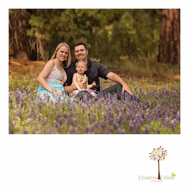 Sonora, CA Custom Portrait Photographer Christine Dibble Photography_1478.jpg