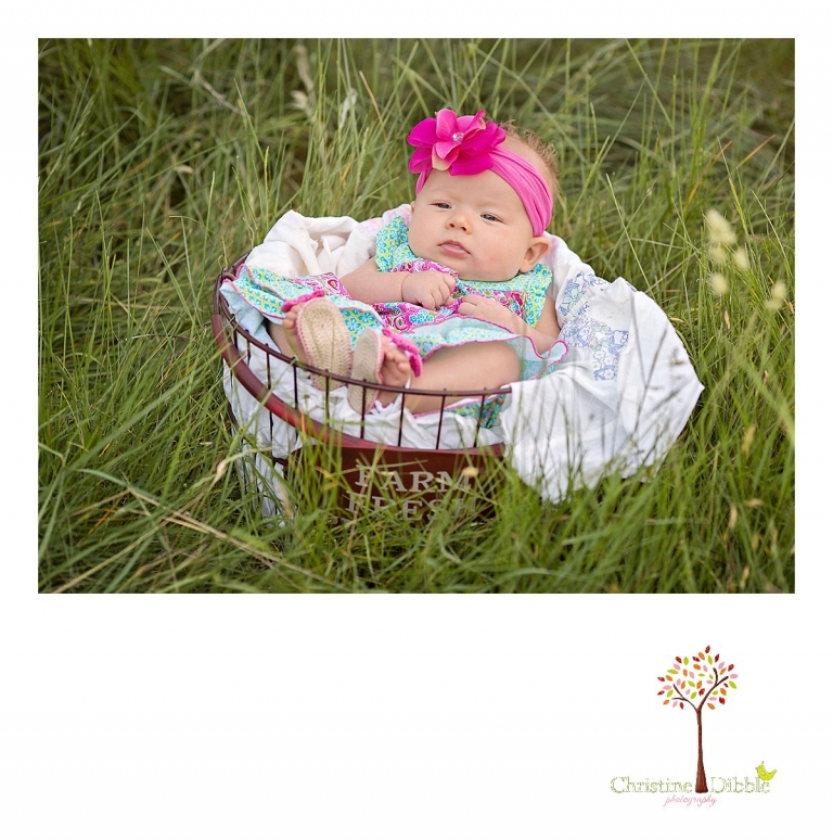 Sonora, CA Custom Portrait Photographer Christine Dibble Photography_1622.jpg