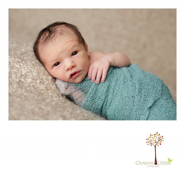 Sonora, CA Custom Portrait Photographer Christine Dibble Photography_2517.jpg