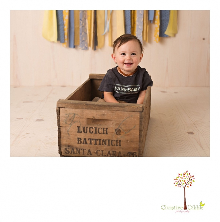 Sonora newborn and baby photographer Christine Dibble Photography takes photos of a baby boy for his first birthday with blues and yellows, fruit, and vintage crates and wash tubs.