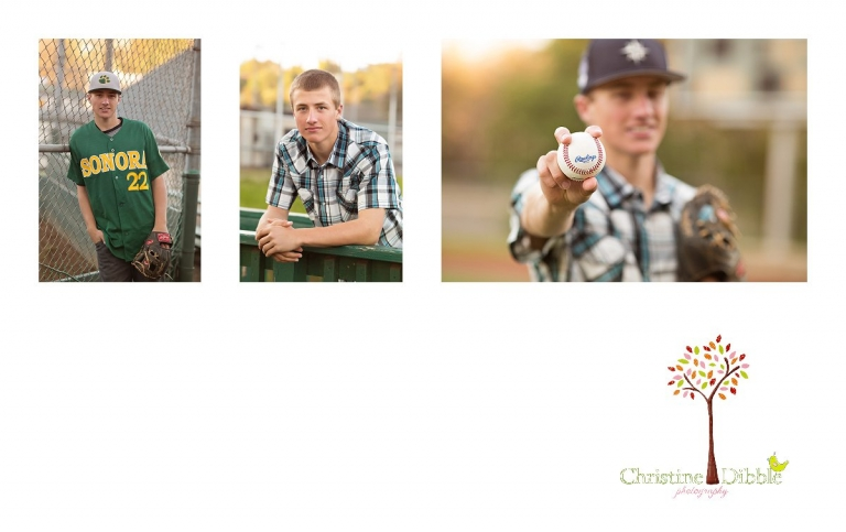 Sonora, CA Custom Portrait Photographer Christine Dibble Photography_2800.jpg