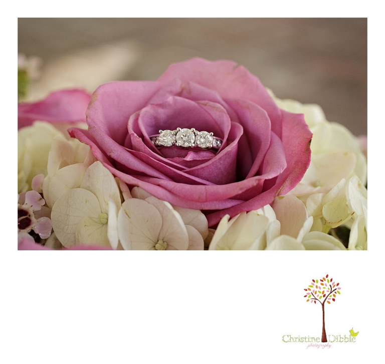 Christine Dibble Photography, Sonora and Reno wedding photographer, photographsa wedding ring and diamonds.