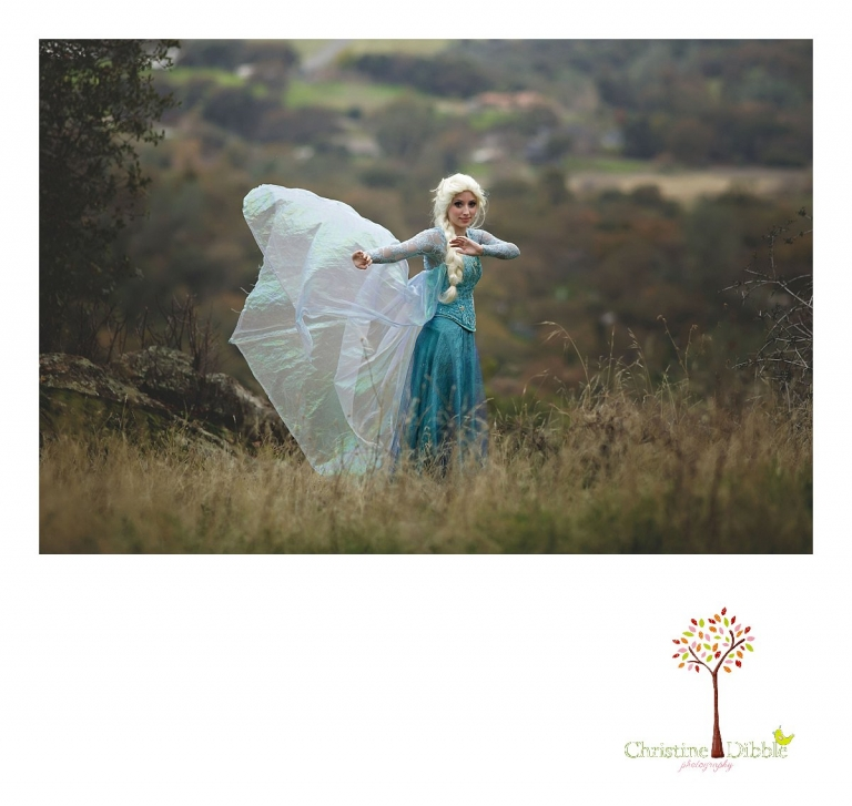 Sonora Elsa photographer Christine Dibble Photography photographs the beautiful princess Elsa outdoors overlooking a valley with gray winter skies.
