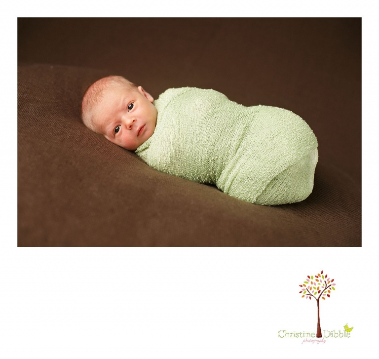 A baby boy looks around with eyes wide open while Christine Dibble Photography of Sonora takes newborn portraits during a Sonora newborn photography session.