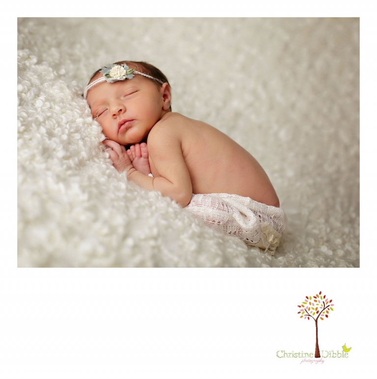 Best Sonora newborn photographer Christine Dibble Photography takes portraits of an eight day old newborn baby girl as she sleeps.