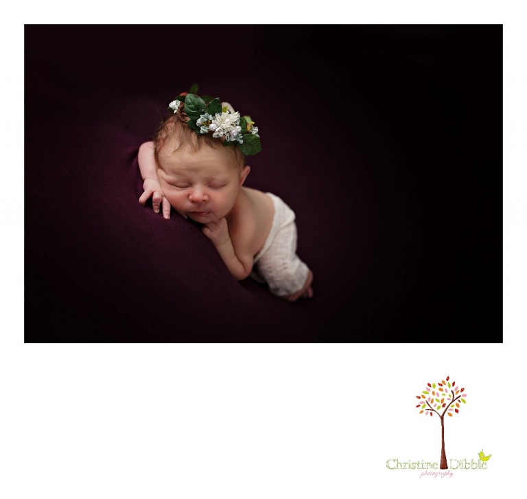 Best Sonora newborn photographer Christine Dibble Photography takes indoor studio photos of a newborn baby girl wearing a head wreath while posed on blabkets.