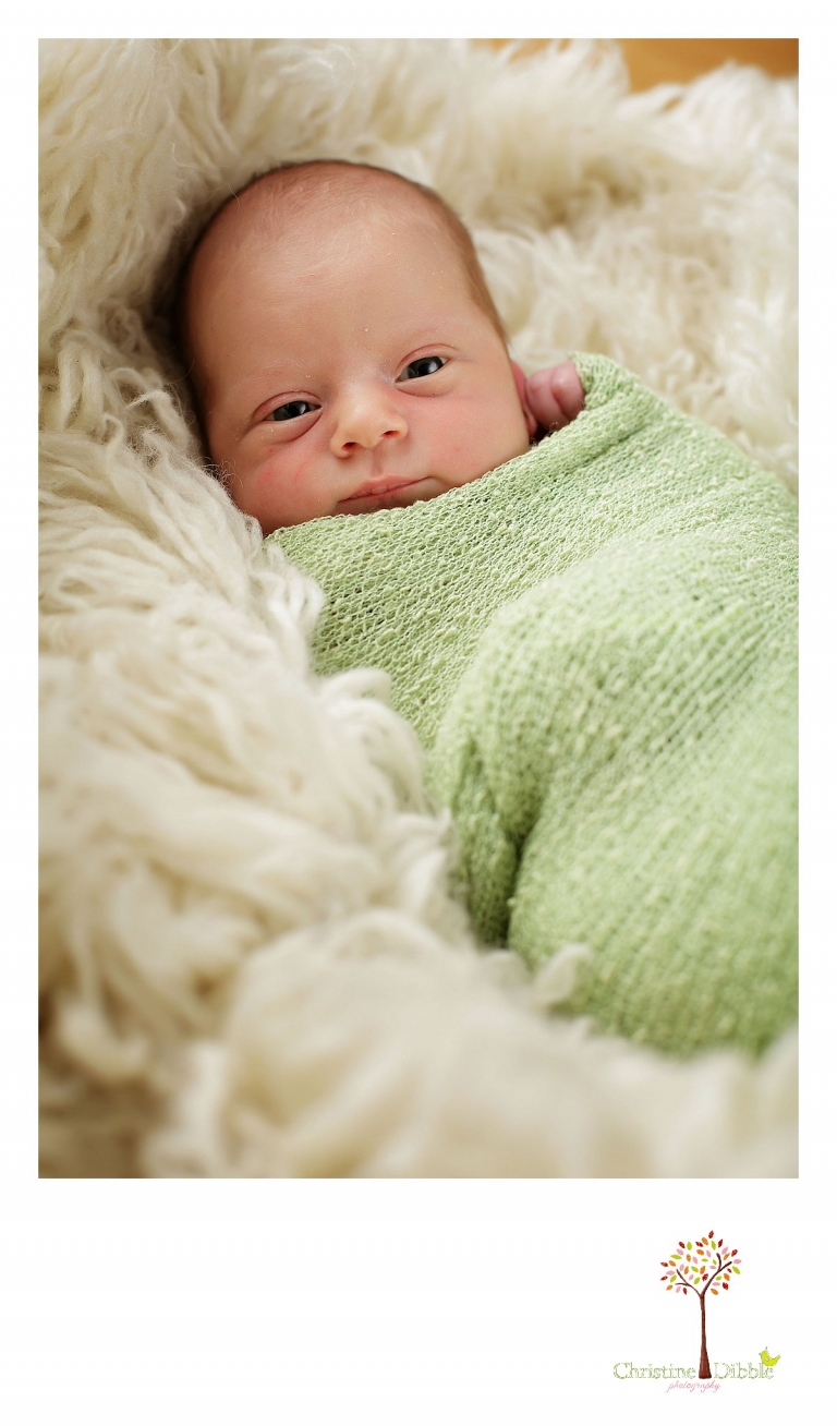 Best Sonora newborn photographer Christine Dibble Photography takes photos of a nine day old baby boy as he looks right at the camera.