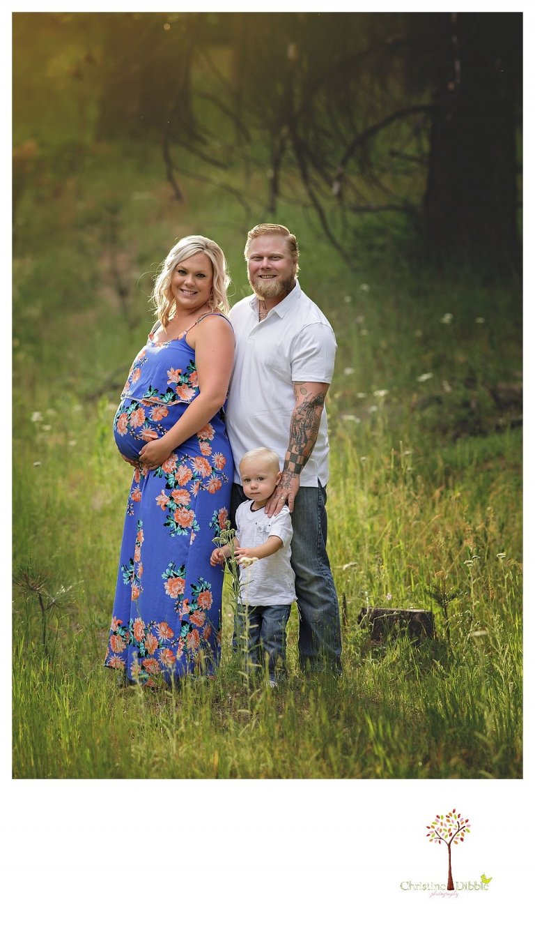 Sonora maternity photographer Christine Dibble Photography takes outdoor family pregnancy photos in a wildflower field and woods with golden light.