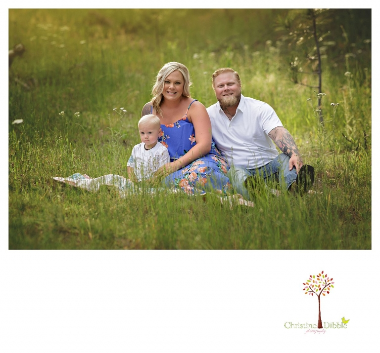 Sonora maternity photographer Christine Dibble Photography takes outdoor family pregnancy photos of a mom in a blue floral dress, dad, and young toddler.