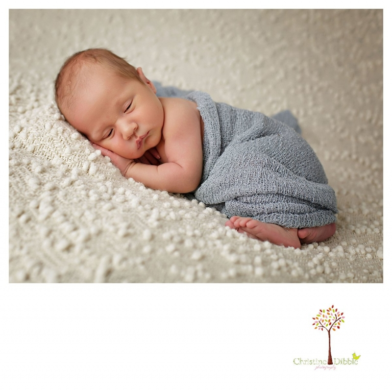 Sonora newborn and baby photographer Christine Dibble Photography takes indoor studio portraits of a sleeping baby boy in a blue wrap.