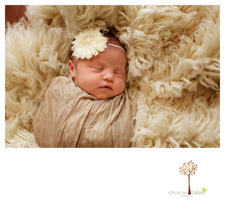 Newborn photography by Sonora photographer Christine Dibble Photography includes studio sessions with posed and prop images, wraps, headbands, flokati rugs, and baskets.