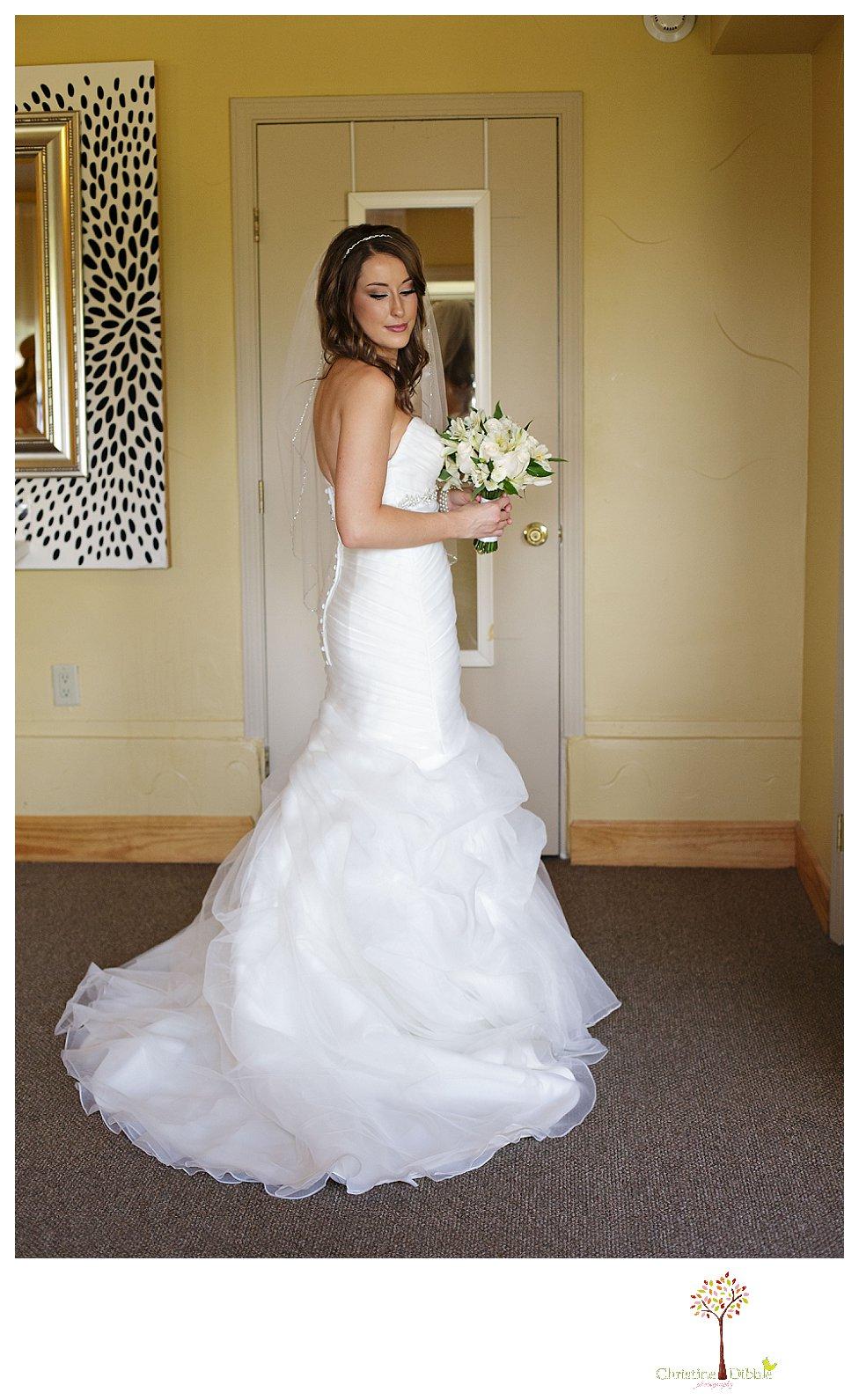 Reno Sonora Wedding Photographer | Tannenbaum Events Center ...