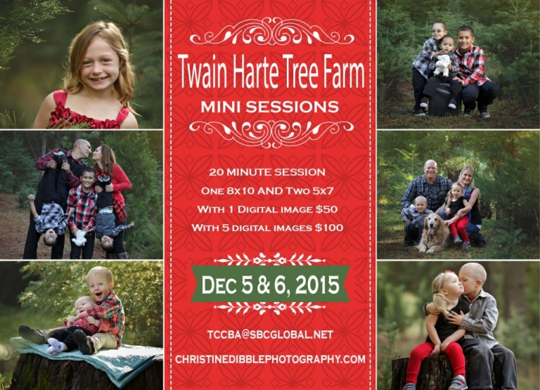 Sonora photographer Christine Dibble Photography is offering Twain Harte Tree Farm mini photography sessions this December.