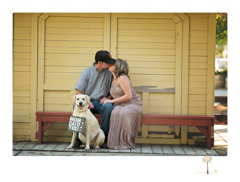 Sonora Engagement and wedding Photographer Christine Dibble Photography photographs an engagement session at Hurst Ranch in Jamestown of a couple and their yellow lab.