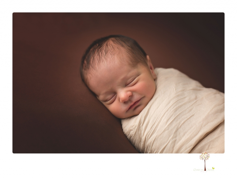 Best Sonora Newborn Photographer Christine Dibble Photography takes newborn portraits during a session in her studio using blankets, wraps, flokatis and props in browns and neutrals.