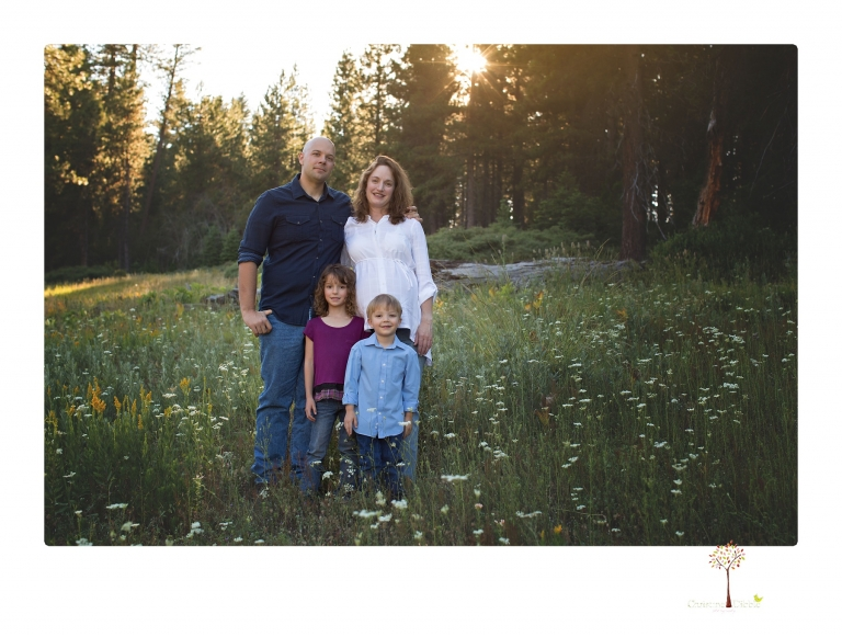 Sonora maternity photographer Christine Dibble Photography takes family maternity portraits of a mom expecting twins  in a wildflower field near Long Barn.