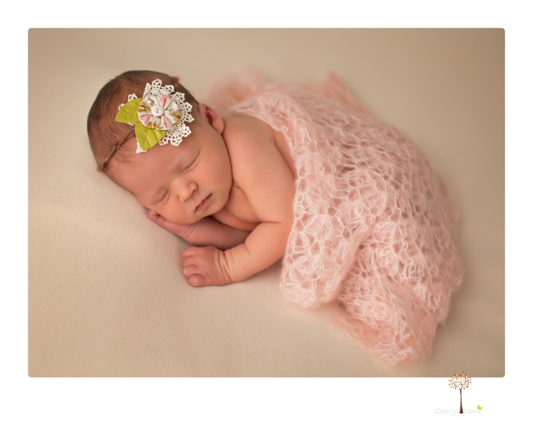 Best Sonora newborn photographer Christine Dibble Photography takes studio newborn portraits of a baby girl at eight days old with headbands, flowers and pink touches in the props.