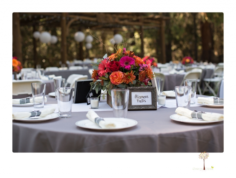 Sonora wedding photographer Christine Dibble Photography photographs a rustic Lazy Z Resort wedding in Twain Harte where the bride and groom made all the decorations for their weekend destination wedding.