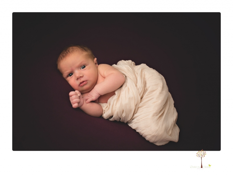 Best Sonora newborn photographer Christine Dibble Photography takes wide awake newborn studio portraits of a baby girl with her parents and in wraps.