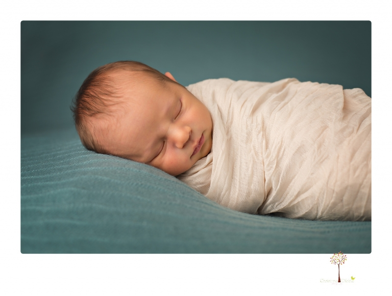 Best Sonora newborn photographer Christine Dibble Photography takes studio newborn portraits of a baby boy and his dog and the parents during a newborn portrait session.