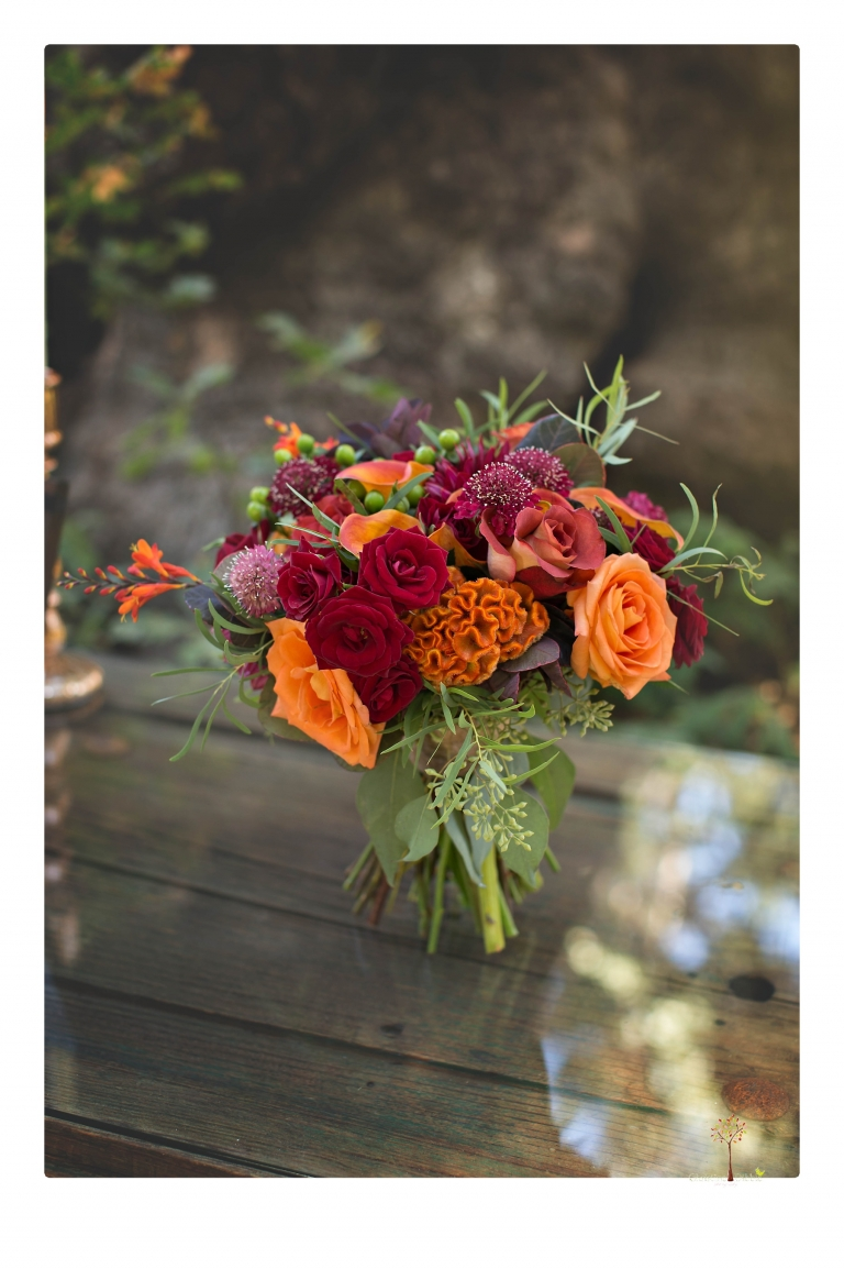 Sonora and Arnold wedding photographer Christine Dibble Photography photographs a colorful and fun Fall wedding at Arnold's Black Bear Inn.