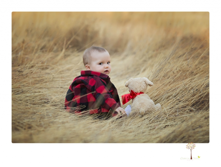 Sonora baby photographer Christine Dibble Photography takes photos of an eight month old baby boy in a field in Columbia with a stuffed dog and pumpkins.
