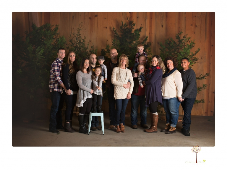 Sonora engagement photographer Christine Dibble Photography captures a surprise proposal at Hurst Ranch during a family portrait session at Christmas time.